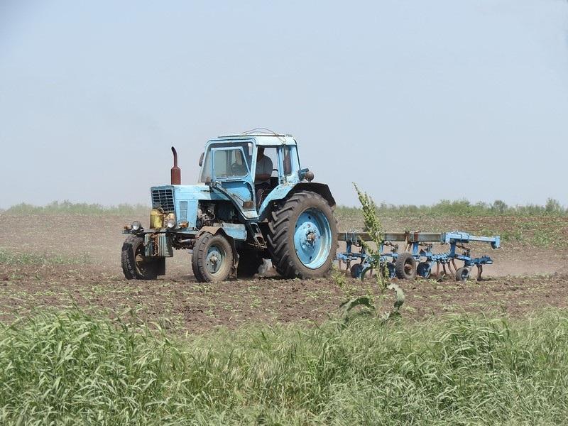 профессия фермер